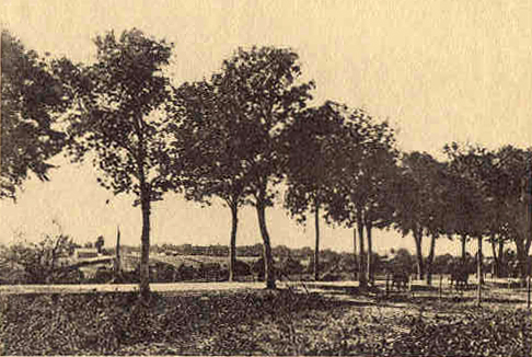 A view of the high road leading from the village ol Oppetlischken to that of Kraupischken (East Prussia), where a baltle was fough-on August 5/19th., 1914